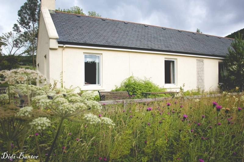 Wildflower garden outside Carnaclasha 3 Bedroom House Vacation Rental Northern Ireland
