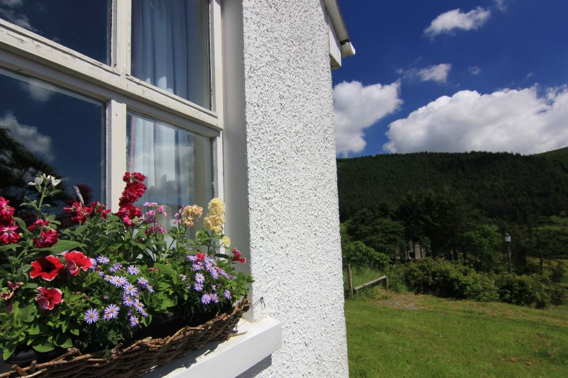 Window Flowers, Cnoc Si, Rostrevor Holidays