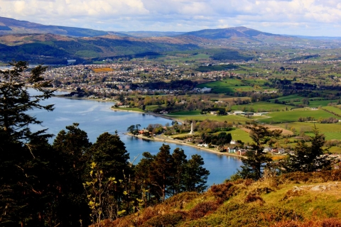 View from above Rostrevor
