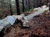 Step Down, Rostrevor Mountain Bike Trails