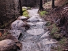 Rock garden, Rostrevor Mountain Bike Trails