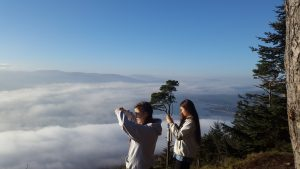 Americans enjoy the view from Kodak Corner in Rostrevor when they visit Northern Ireland